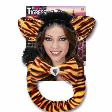Carnaval verkleedset tijgerrin voor volwassenen