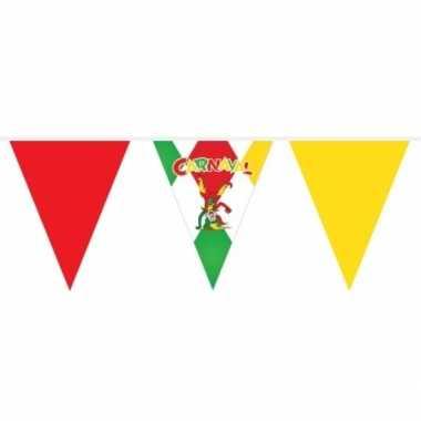 Carnaval vlaggetjes vlaggenlijn 10 meter