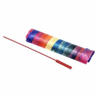 Danslint regenboog 225 cm speelgoed