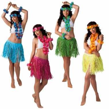 Hawaii kransen verkleed setje met rokje