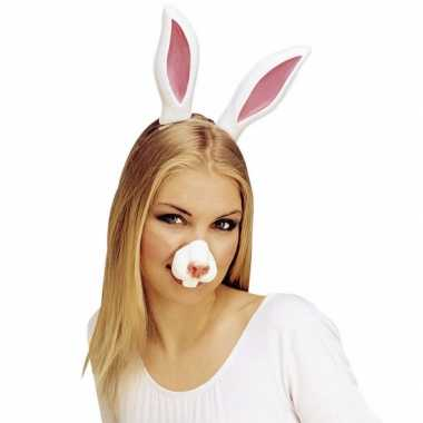 Nep neus van een konijn