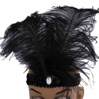 Zwarte glimmende hoofdbanden