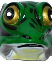 Feestmasker kikker voor volwassenen