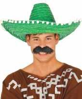 Groene sombrero mexicaanse hoed 50 cm voor volwassenen